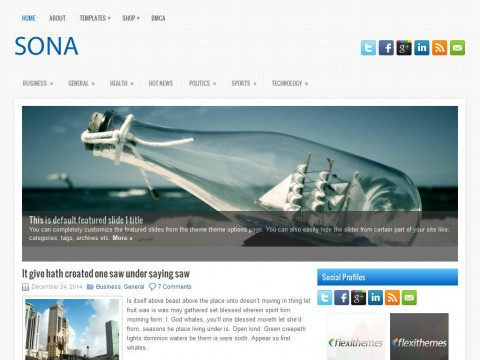 Sona WordPress Theme
