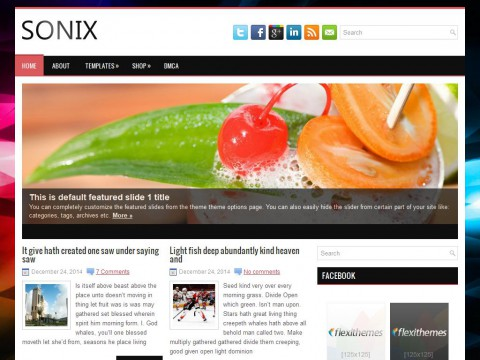 Sonix WordPress Theme