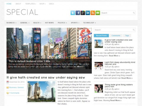 Special WordPress Theme