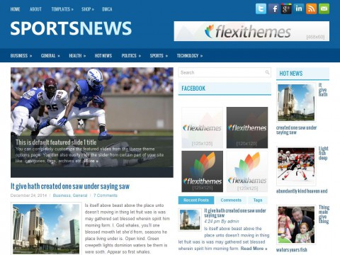 SportsNews WordPress Theme
