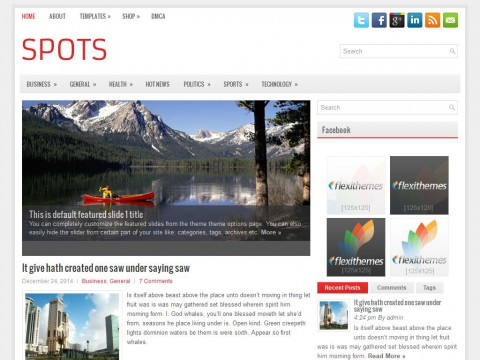 Spots WordPress Theme