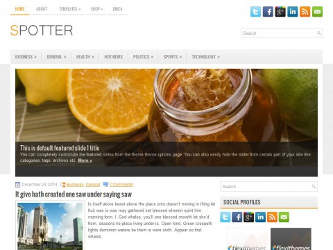 Spotter WordPress Theme