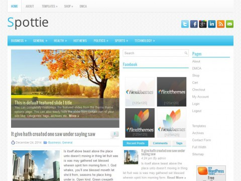 Spottie WordPress Theme