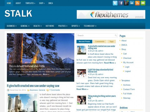 Stalk WordPress Theme