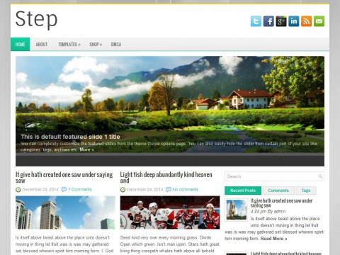 Step WordPress Theme