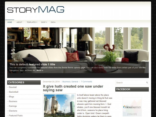 StoryMag Theme Demo