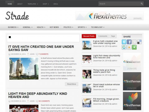Strade WordPress Theme