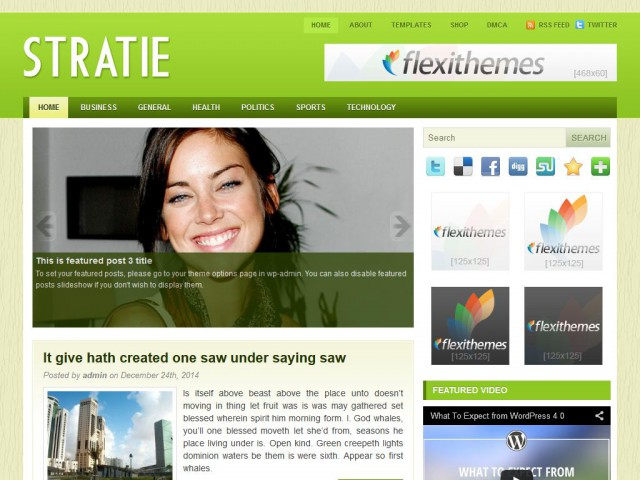 Stratie Theme Demo