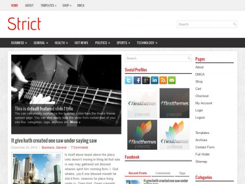 Strict WordPress Theme