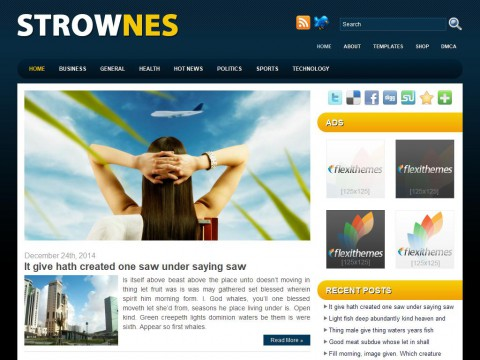 Strownes WordPress Theme
