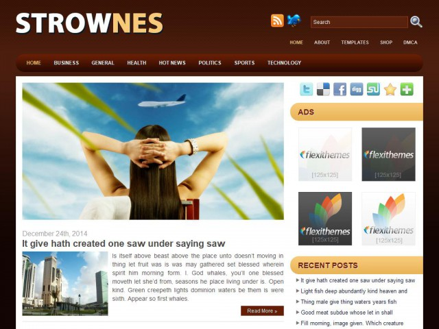 Strownes Brown Theme Demo