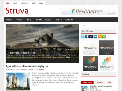 Struva WordPress Theme