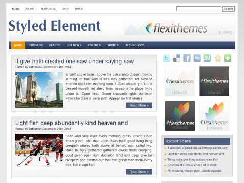 Styled Element WordPress Theme