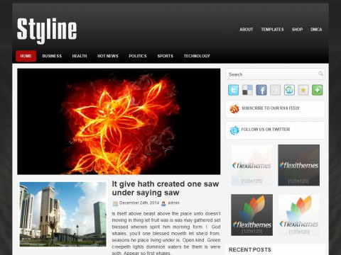 Styline WordPress Theme
