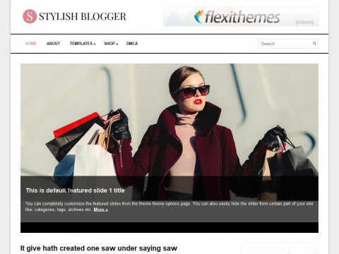 StylishBlogger WordPress Theme