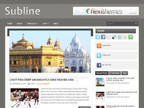 Subline WordPress Theme