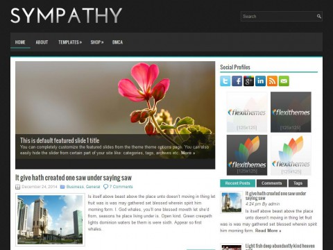 Sympathy WordPress Theme