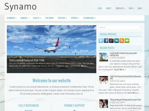 Synamo WordPress Theme