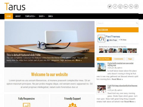 Tarus WordPress Theme