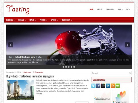 Tasting WordPress Theme