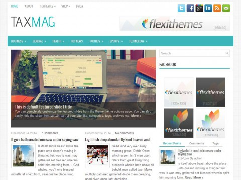 TaxMag WordPress Theme