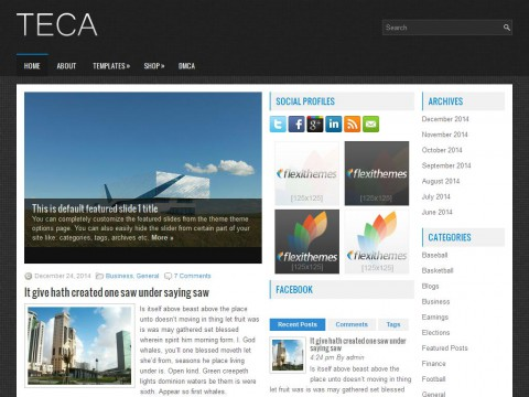 Teca WordPress Theme