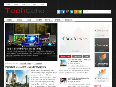 TechEcho WordPress Theme
