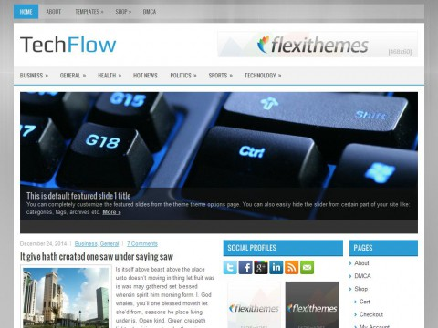 TechFlow WordPress Theme