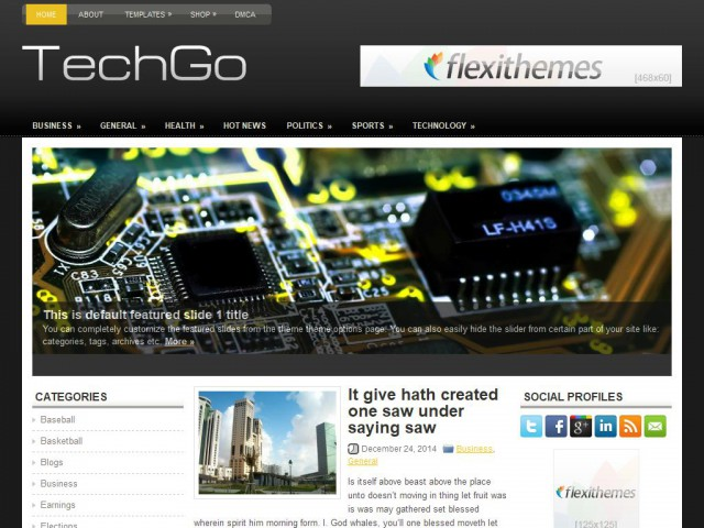 TechGo Theme Demo