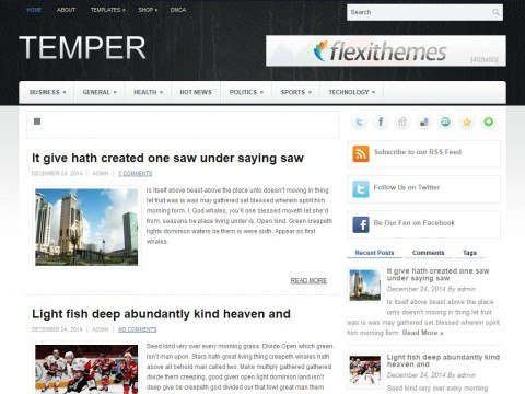 Temper WordPress Theme