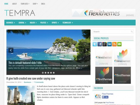 Tempra WordPress Theme