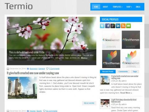 Termio WordPress Theme
