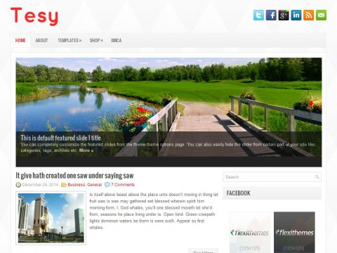 Tesy WordPress Theme