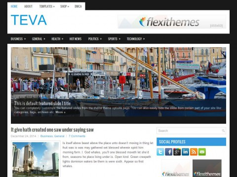 Teva WordPress Theme