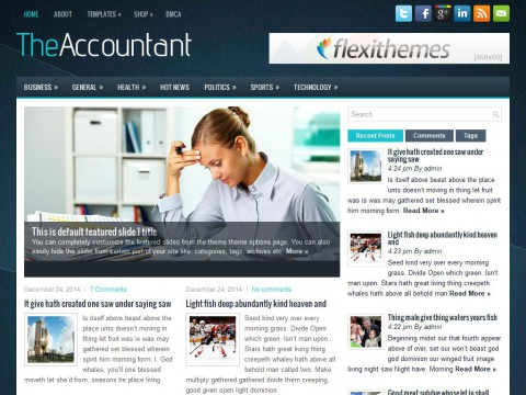 TheAccountant WordPress Theme