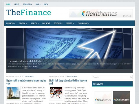 TheFinance WordPress Theme