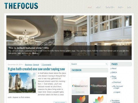 TheFocus WordPress Theme