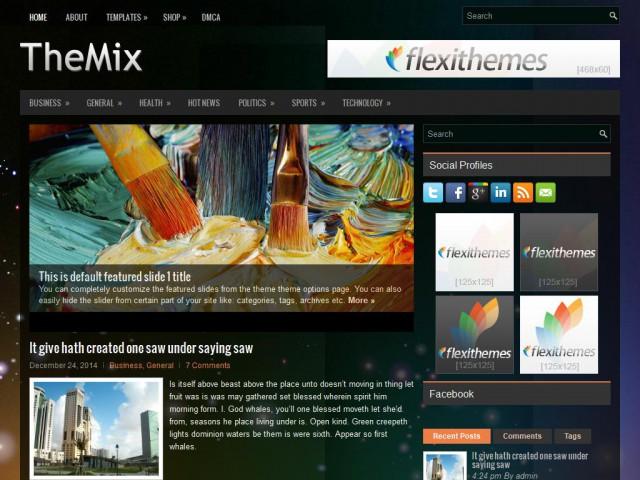 TheMix Theme Demo