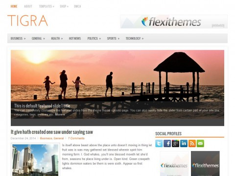 Tigra WordPress Theme
