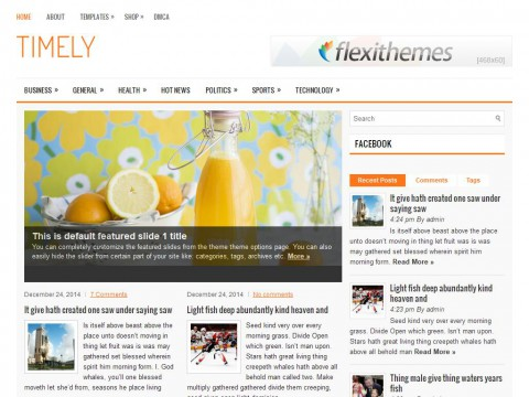 Timely WordPress Theme