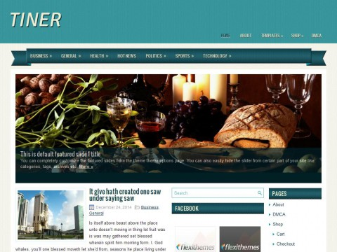 Tiner WordPress Theme