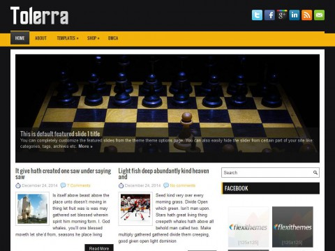 Tolerra WordPress Theme
