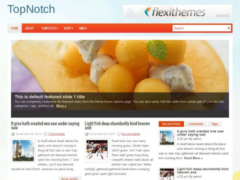 TopNotch WordPress Theme