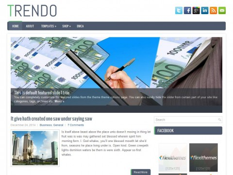 Trendo WordPress Theme