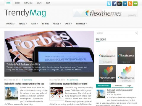 TrendyMag WordPress Theme