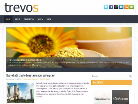 Trevos WordPress Theme