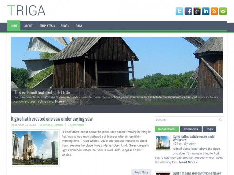 Triga WordPress Theme