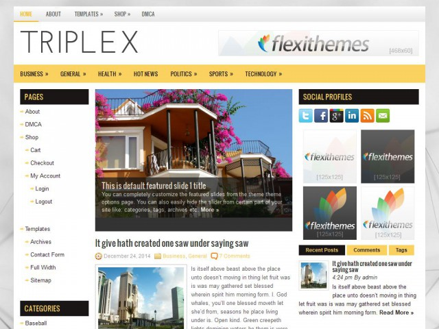 Triplex Theme Demo