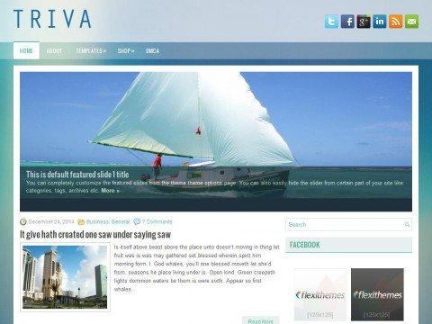 Triva WordPress Theme