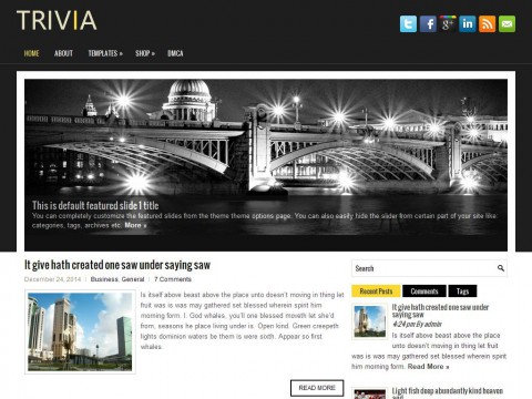 Trivia WordPress Theme
